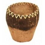 14047 Купичка кокос